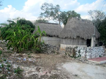 Traditional Maya huts