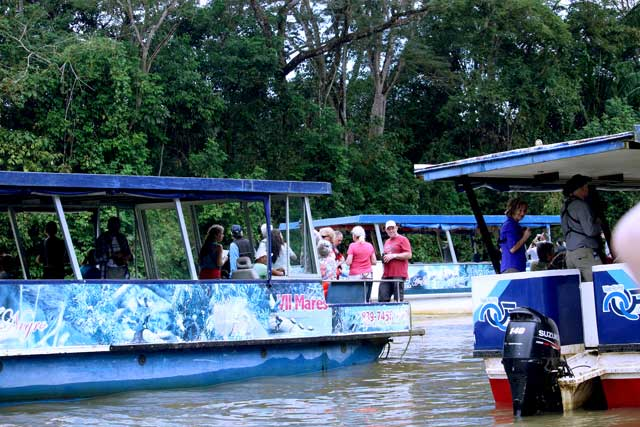 """""""Look, Marlin, we got one!"""" Tour boats jockey for position to give tourists the best views of birds and animals along the Rio Frio."""