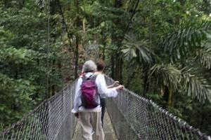 bridge-sway