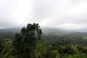 misty-valley-2