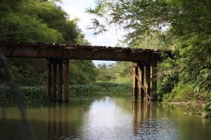 sierpe-railway-bridge